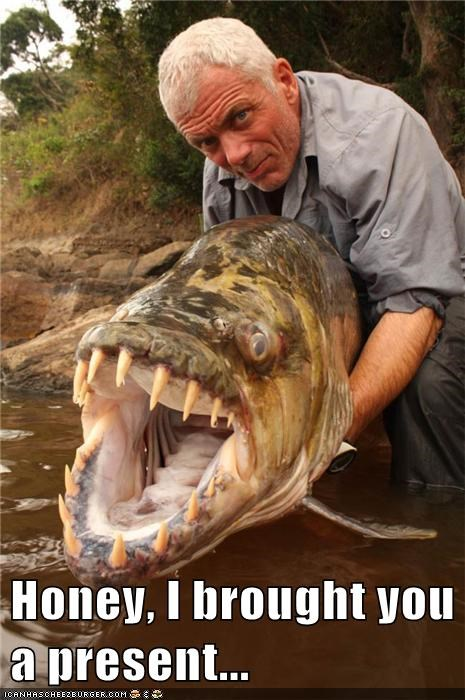 scary present jeremy wade teeth fish - 7086605824