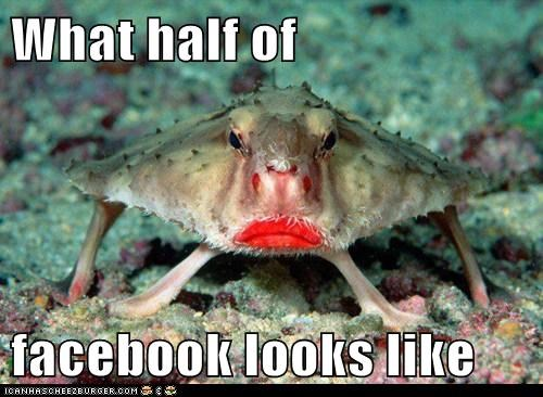 duck face,crabs,facebook,lips
