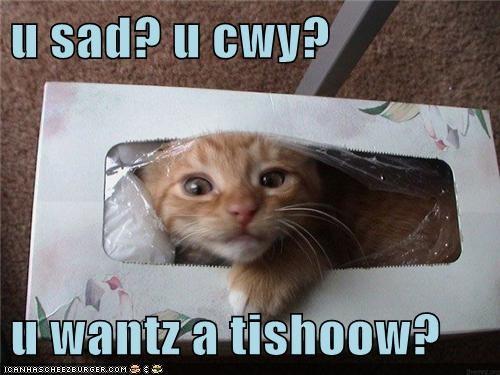 u sad? u cwy? u wantz a tishoow?
