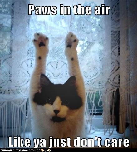 paws Party Cats - 7088290816