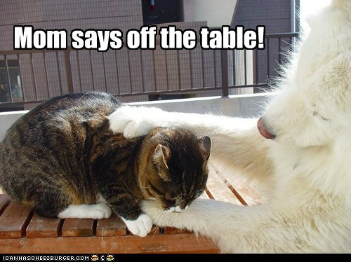 Mom says off the table!
