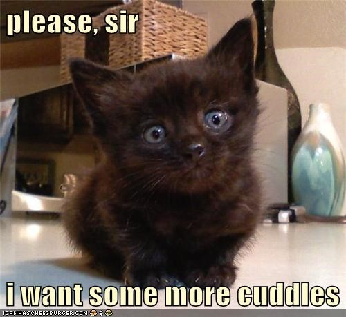 Aw, You Can Have All the Cuddles You Want!
