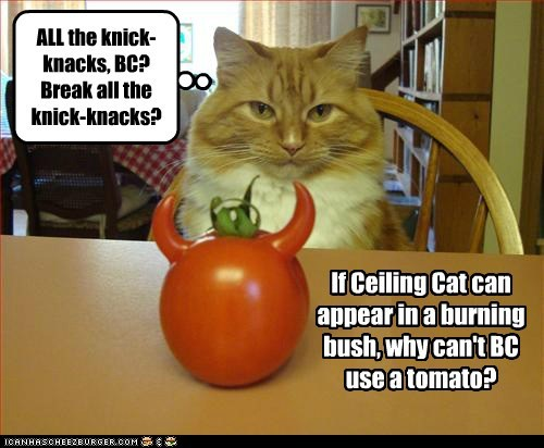 If Ceiling Cat can appear in a burning bush, why can't BC use a tomato? ALL the knick-knacks, BC? Break all the knick-knacks?