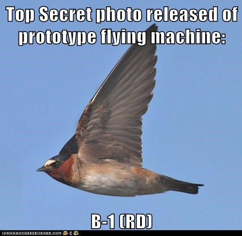 birds prototype flying top secret - 7089993472
