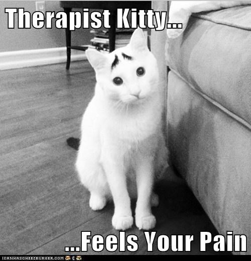 Therapist Kitty... ...Feels Your Pain