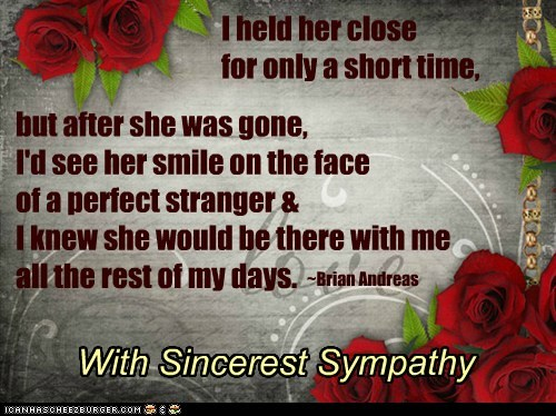 Cheezburger Image 7090123776