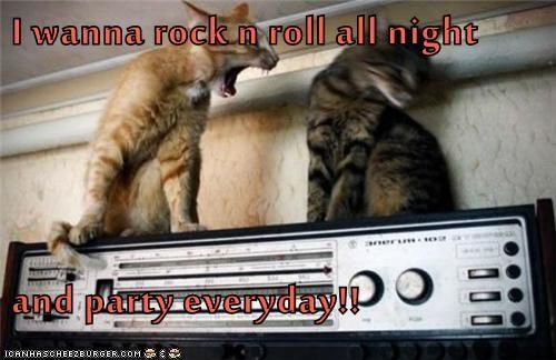 Music KISS Cats - 7090583296