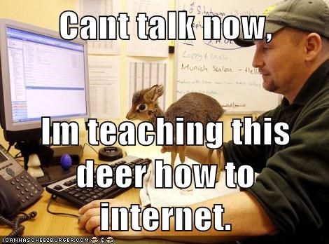 Cant talk now, Im teaching this deer how to internet.