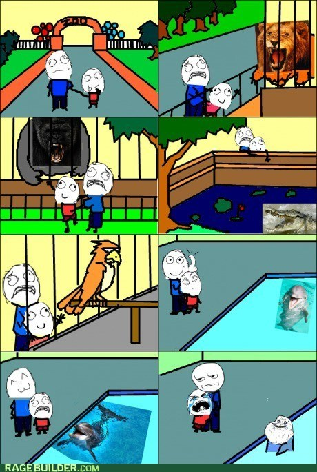 forever alone,dolphins,zoo