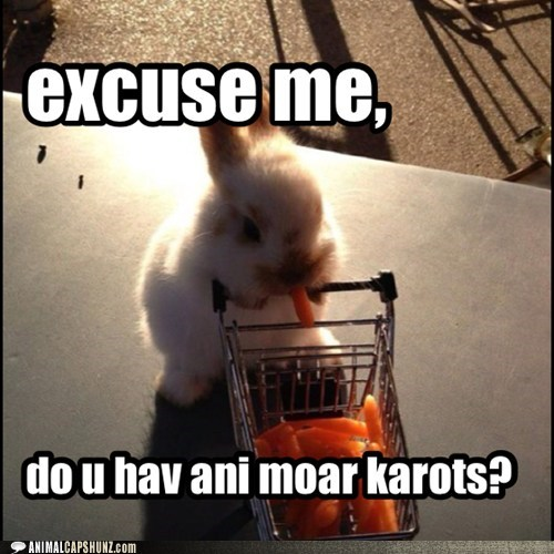 bunnies,more,shopping cart,carrots