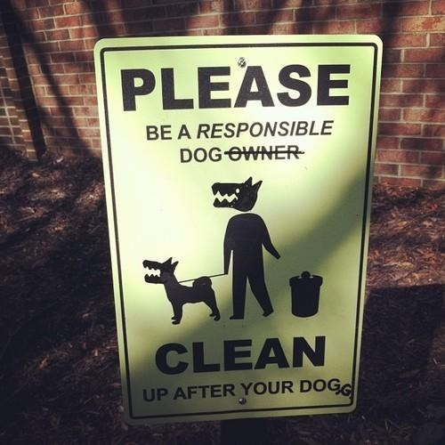 sign,dogs