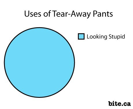 tear-away pants,looking stupid,Pie Chart