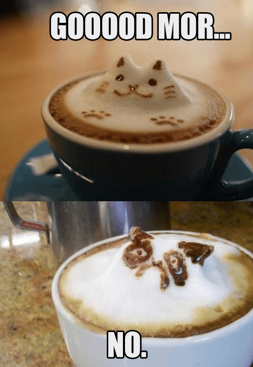 morning coffee Grumpy Cat - 7093359360