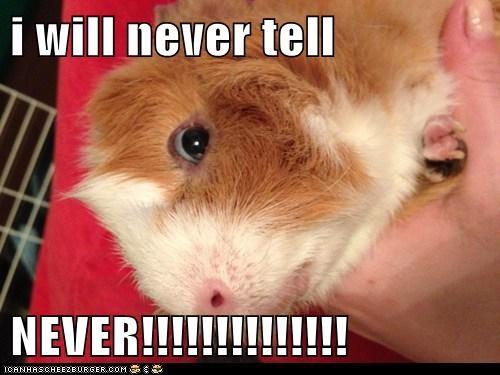 i will never tell  NEVER!!!!!!!!!!!!!!