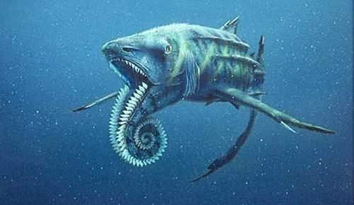 crazy teeth shark science fish - 7093464320
