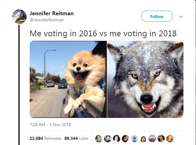 funny memes political memes Memes 2018 voting - 7093509