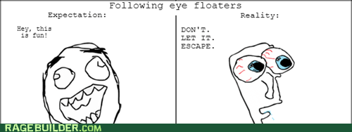 floaters,expectation vs reality