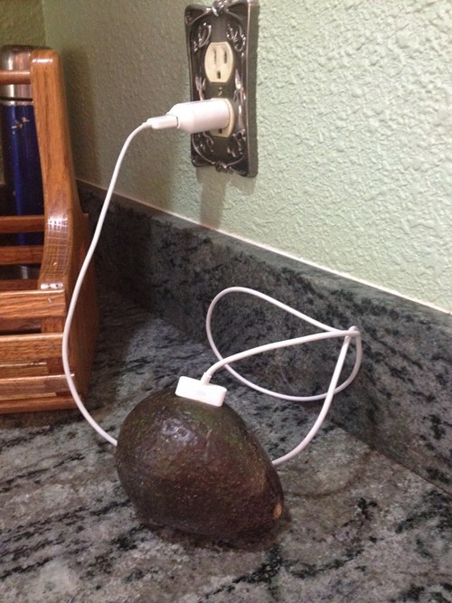 charging,avocado,weird