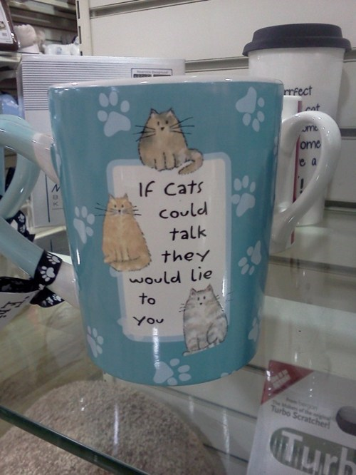 Cats mug true facts g rated win - 7093896192