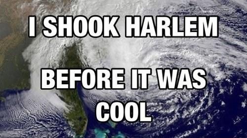 hipsters,hurricanes,harlem shake