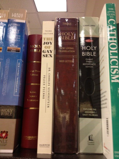 religion bible gay library - 7094139904