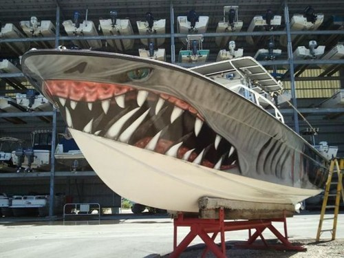 design sharks boat paint job