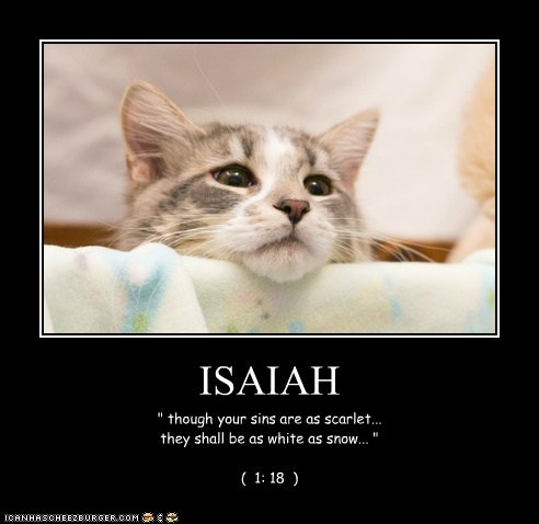 """ISAIAH """" though your sins are as scarlet... they shall be as white as snow... """" ( 1: 18 )"""