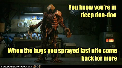 You know you're in deep doo-doo When the bugs you sprayed last nite come back for more