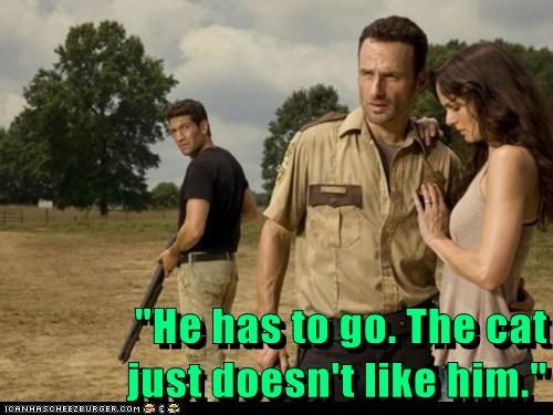 crazy,Rick Grimes,cat,Andrew Lincoln,sarah wayne callies,Jon Bernthal,shane walsh,lori grimes,The Walking Dead