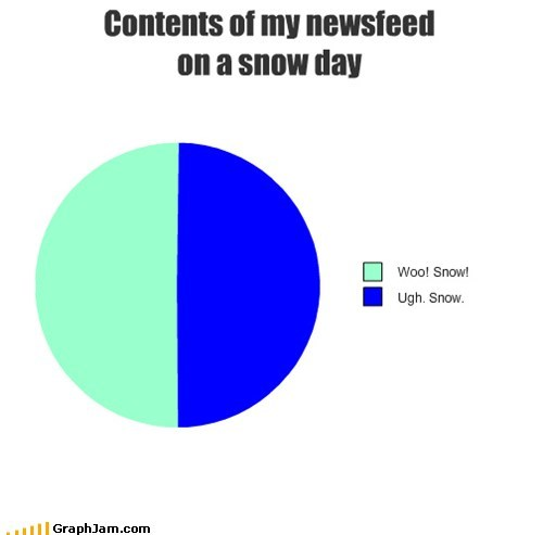 snow day,facebook,Pie Chart