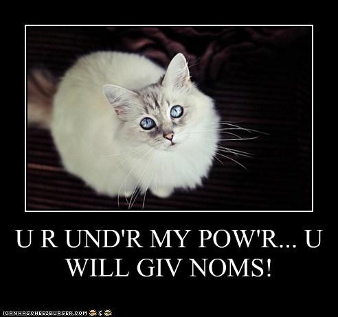 U R UND'R MY POW'R... U WILL GIV NOMS!