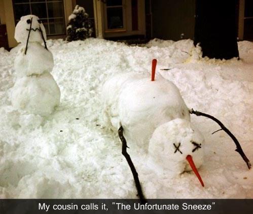 dead snowman - 7096961792