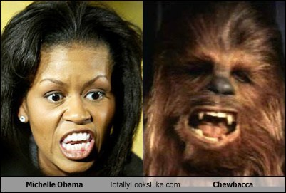 Michelle Obama Totally Looks Like Chewbacca