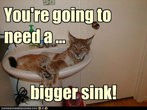 You're going to need a ... bigger sink!