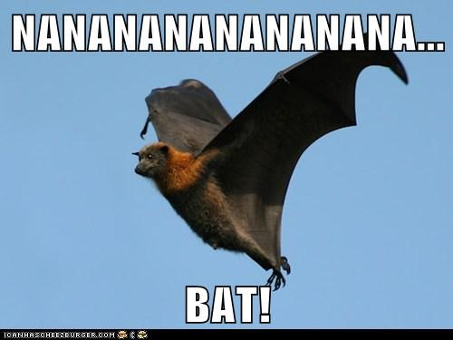 NANANANANANANANA... BAT!