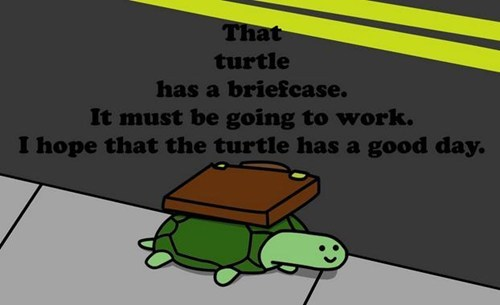 important turtle briefcase