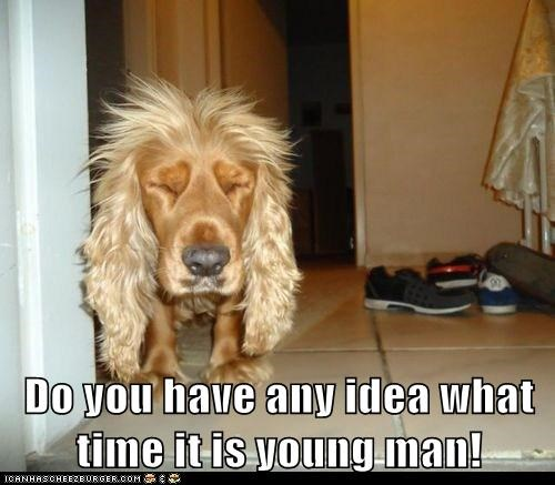 Do you have any idea what time it is young man!