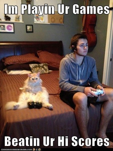 games,humans,video games,Cats