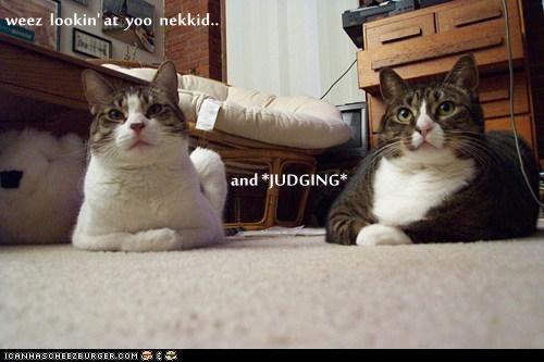 weez  lookin' at  yoo  nekkid..          and *JUDGING*