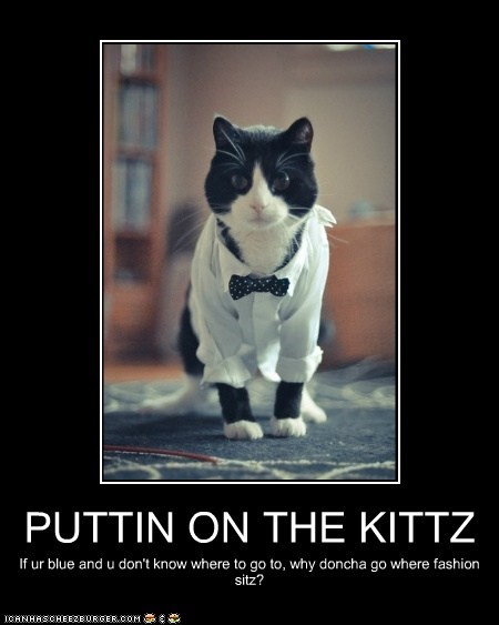 PUTTIN ON THE KITTZ If ur blue and u don't know where to go to, why doncha go where fashion sitz?