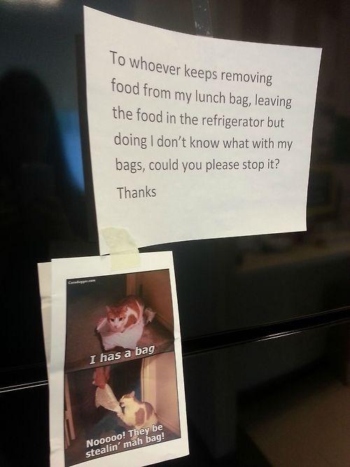 lolcats Memes Office Cats - 7101100032