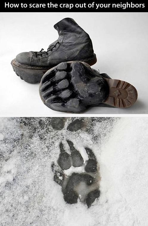 shoes,neighbors,bear