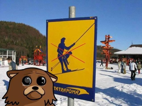 signs,pedobear,skiing