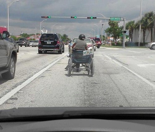 wheelchair license plate