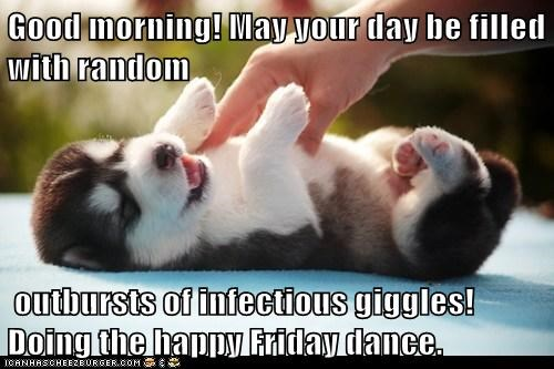 Good Morning May Your Day Be Filled With Random Outbursts Of Infectious Giggles Doing The Happy Friday Dance Cheezburger Funny Memes Funny Pictures