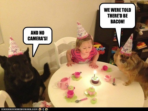 WE WERE TOLD THERE'D BE BACON! AND NO CAMERA'S!