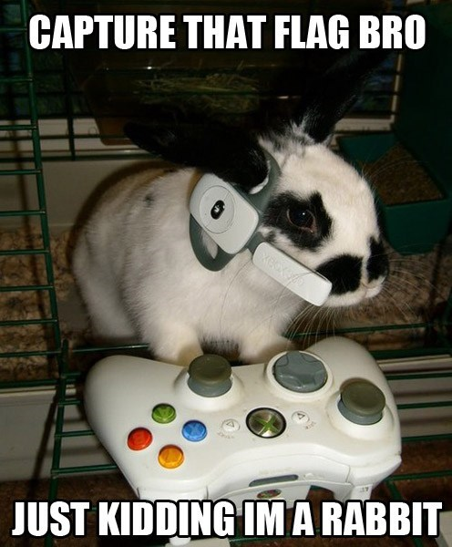 capture the flag xbox animals rabbits - 7104056576