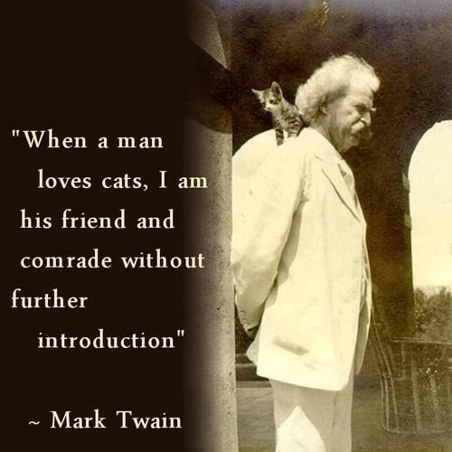 quotes,mark twain,history,Cats
