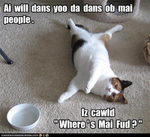 food dance Cats - 7104091648