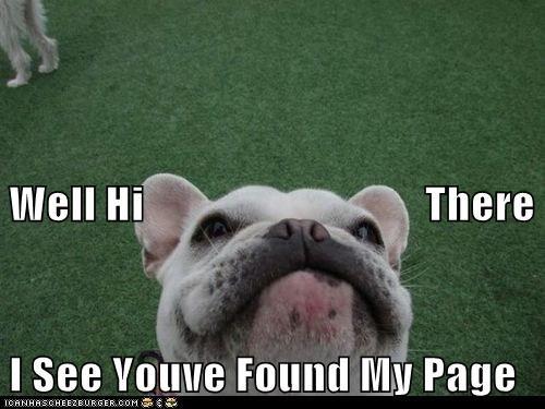 Cheezburger Image 7104159744
